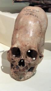 63-ica-museum-chongos-skull