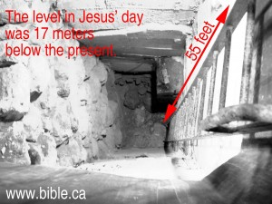 bible-archeology-jerusalem-temple-mount-55-feet-higher
