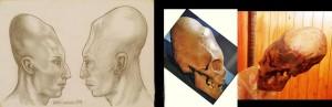 czaszki-wielkie-10