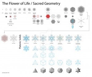 flower_of_life___sacred_geometry_by_fbdesign-d5ttk02