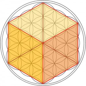 flower_of_life_cube_sml