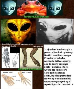 ropuchy-ufo