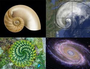 spiral_composite