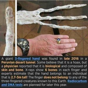 Alien-Claw-Nazca